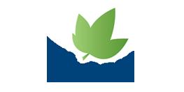 TILMAN_logo2